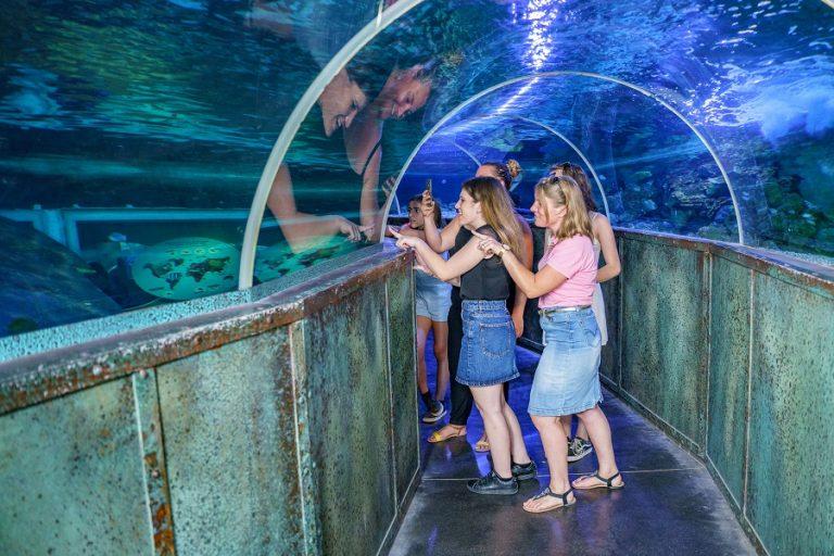 Loire Valley Aquarium-12