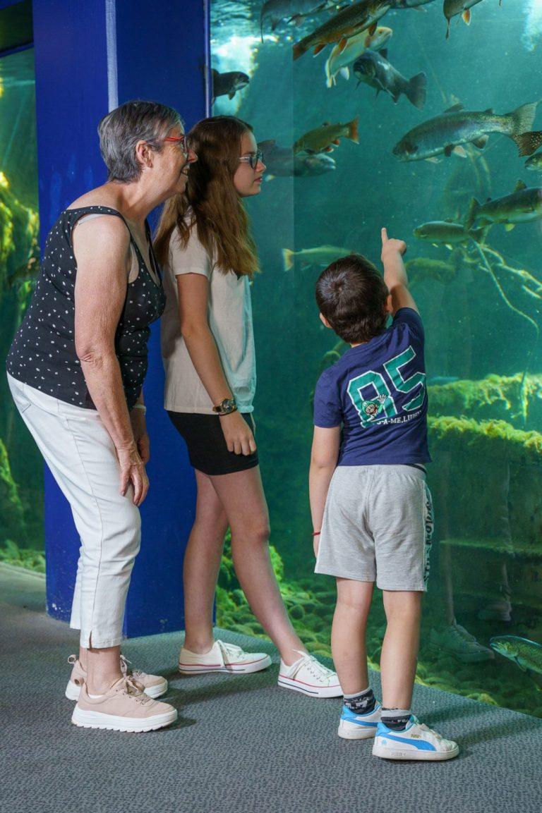 Loire Valley Aquarium-13