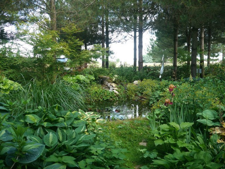 The Garden of Mireille in Touraine Angevine-5