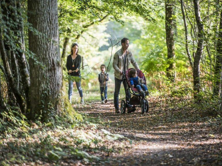 Labyrinthe de la Forêt de Tours-Preuilly-3