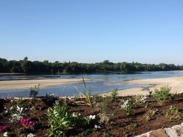 Les bateliers des vents d'galerne – Boat trips on the Loire-4