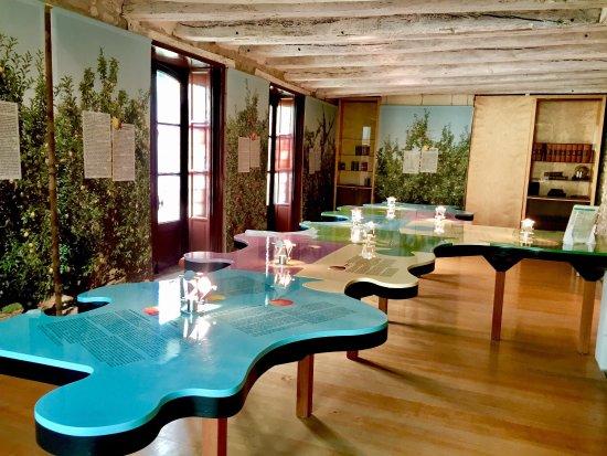 René Descartes House Museum-7