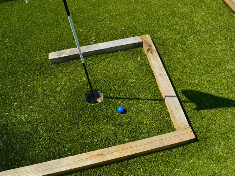 Mini-golf aux oiseaux-4
