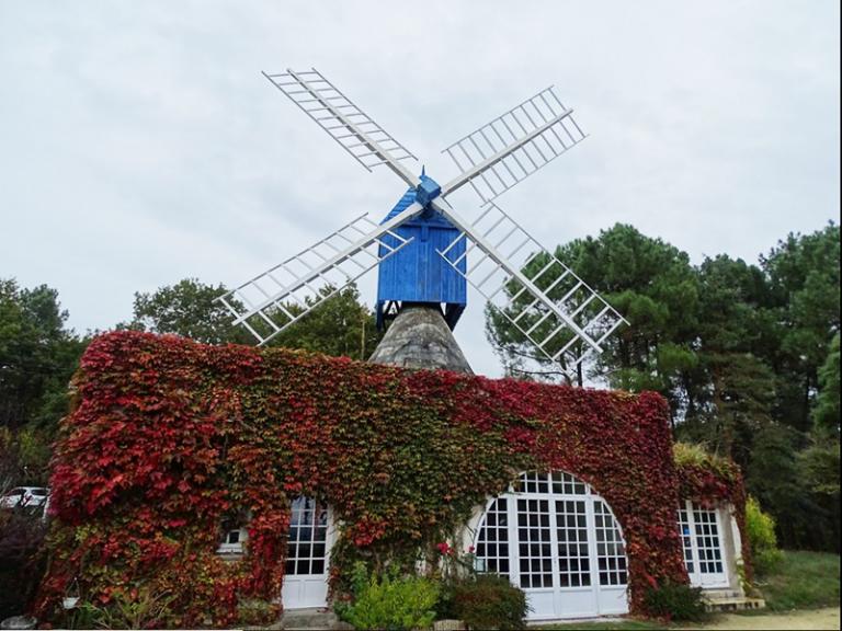 Le Moulin Bleu-2