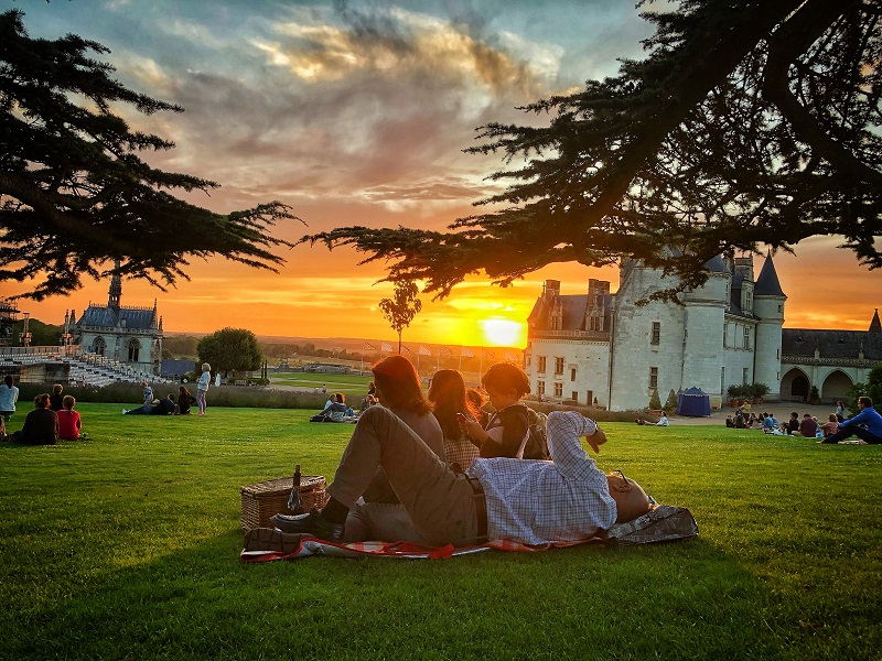 The Region of the Loire Valley Chateau. Picnic in the town of Amboise, right above the River Loire, with wine tasting.