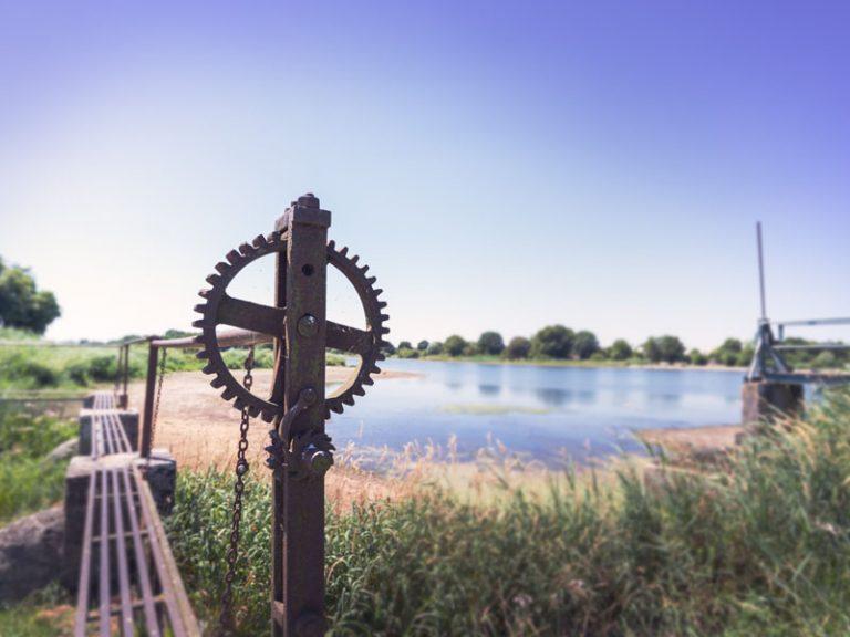 Watching birds around the Louroux pond-5