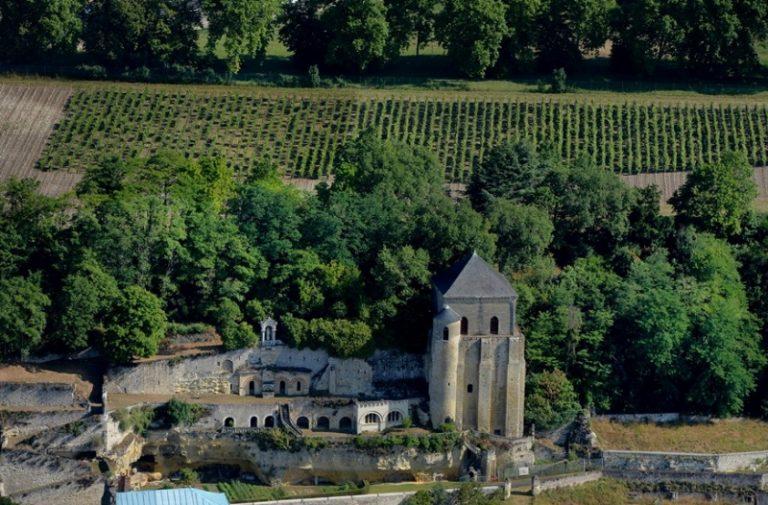 Domaine Vigneau-Chevreau-5
